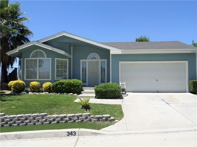 Santa Clarita, Canyon Country, Newhall, Saugus, Valencia, Castaic, Stevenson Ranch, Val Verde Single Family Home For Sale: 20110 Canyon View Drive