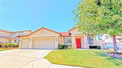 Saugus Single Family Home For Sale: 22711 Flower Fields Avenue