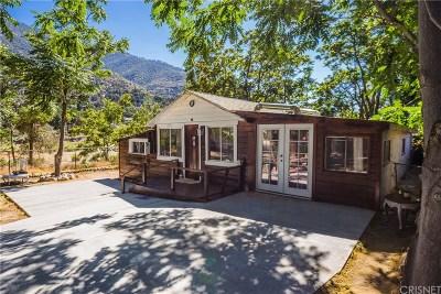 Frazier Park Single Family Home For Sale: 225 San Joaquin Trail