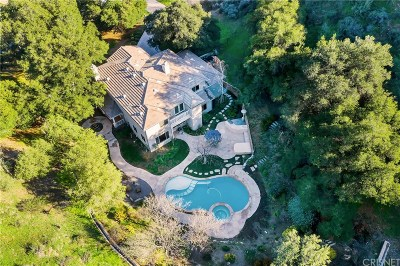 Canyon Country Single Family Home For Sale: 27827 Rolling Hills Avenue