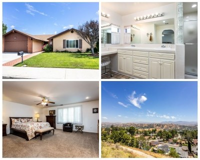 Saugus Single Family Home For Sale: 27458 Garza Drive