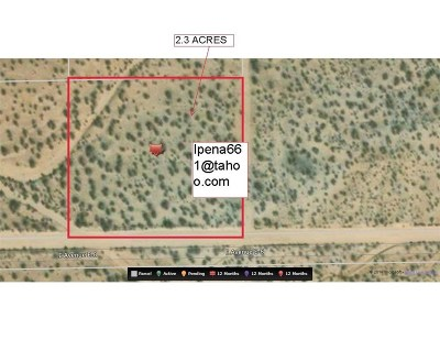 Lancaster Residential Lots & Land For Sale: 17501 Vac/Ave E8/Vic 175 Ste