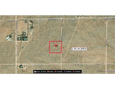 Lancaster Residential Lots & Land For Sale: 19300 E Avenue F10