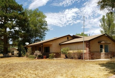 Acton Single Family Home For Sale: 2805 Soledad Canyon Road