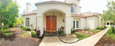 Canyon Country Single Family Home For Sale: 26940 Whitehorse Place