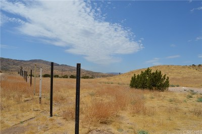 Palmdale Residential Lots & Land For Sale: Vac/Vic Ranchero Rd/Blackberry