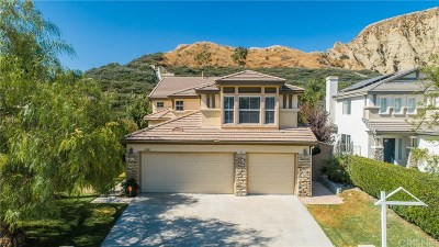 Canyon Country Single Family Home For Sale: 17801 Maplehurst Place