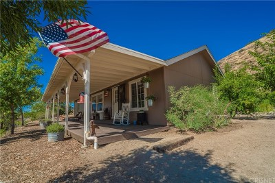 Acton Single Family Home For Sale: 32206 Angeles Forest Highway