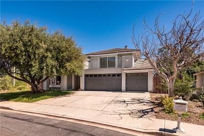Thousand Oaks Single Family Home For Sale: 424 Syringa Street