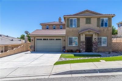 Palmdale Single Family Home For Sale: 40675 Oakbridge Way