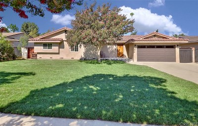Northridge Single Family Home For Sale: 10143 Amestoy Avenue