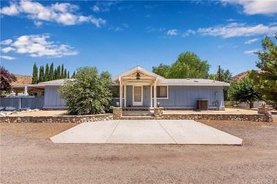 Acton Single Family Home For Sale: 3535 Platz Road