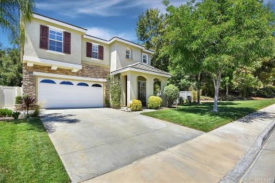 Saugus Single Family Home For Sale: 28721 Placerview