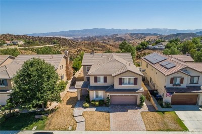 Castaic Single Family Home For Sale: 29070 Madrid Place