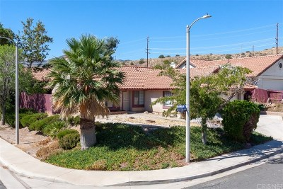 Palmdale Single Family Home For Sale: 516 White Cloud Terrace