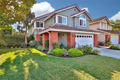 Simi Valley Single Family Home For Sale: 609 Killdale Court