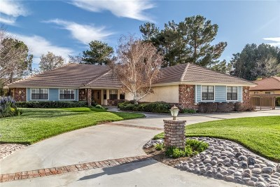 Lancaster Single Family Home For Sale: 2568 Still Meadow Lane