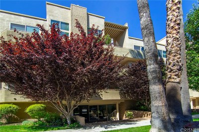 Sherman Oaks Condo/Townhouse Active Under Contract: 14569 Benefit Street #312