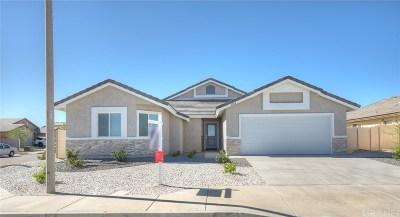 Lancaster Single Family Home For Sale: 5804 Vahan