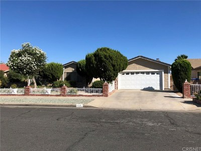 Palmdale Single Family Home For Sale: 410 Fantasy Street