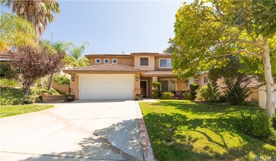 Santa Clarita, Canyon Country, Newhall, Saugus, Valencia, Castaic, Stevenson Ranch, Val Verde Single Family Home For Sale: 32732 The Old Road