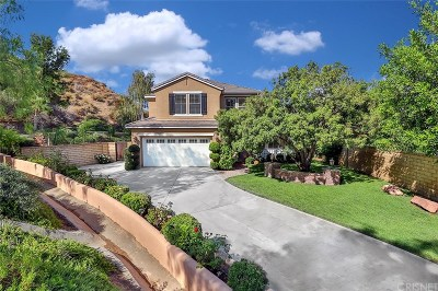 Santa Clarita, Canyon Country, Newhall, Saugus, Valencia, Castaic, Stevenson Ranch, Val Verde Single Family Home For Sale: 22102 Crestline Trails