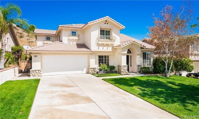 Castaic Single Family Home Active Under Contract: 28635 Oak Valley Road