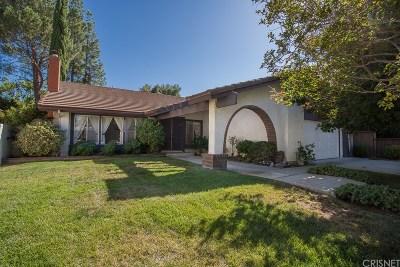 Agoura Hills Single Family Home For Sale: 28912 Burleson Street