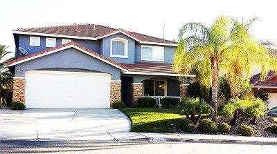 Castaic Single Family Home For Sale: 32760 The Old Road