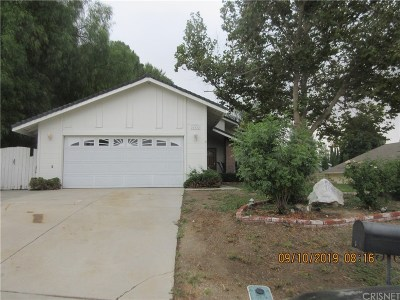 Saugus Single Family Home For Sale: 28432 Brian Court