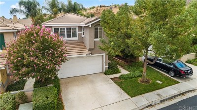 Castaic Single Family Home For Sale: 27614 Morning Glory Place