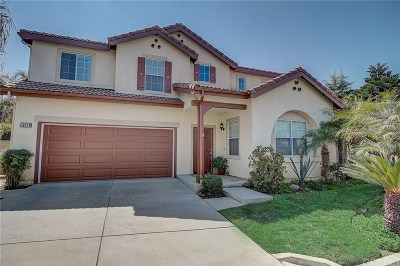 Sylmar Single Family Home For Sale: 12214 Via Santa Marta