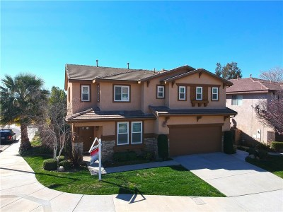 Castaic Single Family Home For Sale: 27852 Pine Crest Place
