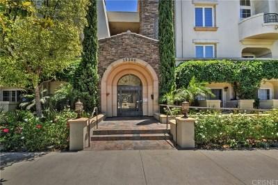 Sherman Oaks Condo/Townhouse For Sale: 15206 Burbank Boulevard #209
