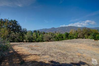 Ojai Residential Lots & Land For Sale: 380 Longhorn Lane
