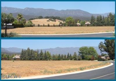 Ventura County Residential Lots & Land For Sale: 12507 Macdonald Drive