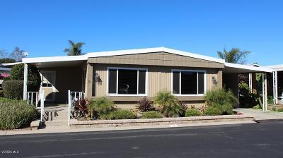 Mobile Home Active Under Contract: 75 Russell Court