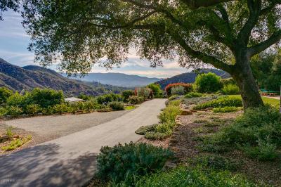 Single Family Home Sold: 455 Camino Cielo