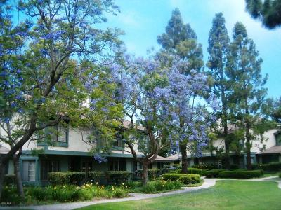 Oxnard Single Family Home For Sale: 3432 Olds Road