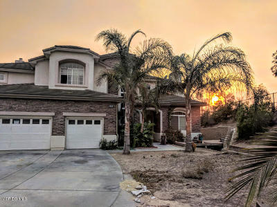 Camarillo Single Family Home For Sale: 5308 Plata Rosa Court