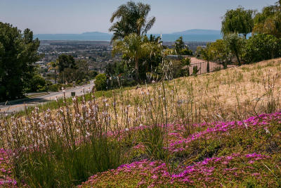 Ventura Residential Lots & Land For Sale: 661 Via Cielito