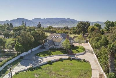 Camarillo Single Family Home Active Under Contract: 344 Valley Vista Drive