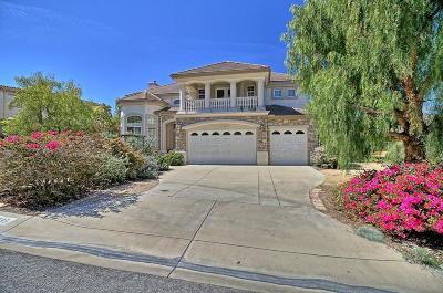 Camarillo Single Family Home For Sale: 2295 Rambling Rose Drive