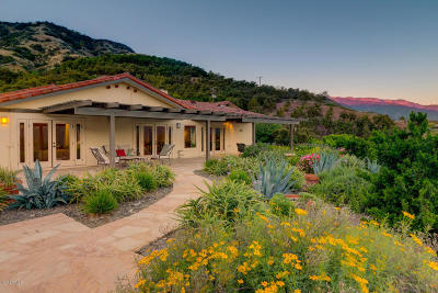 Ojai Single Family Home For Sale: 1515 Daly Road