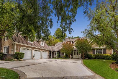 Agoura Hills Single Family Home For Sale: 29379 Wagon Road