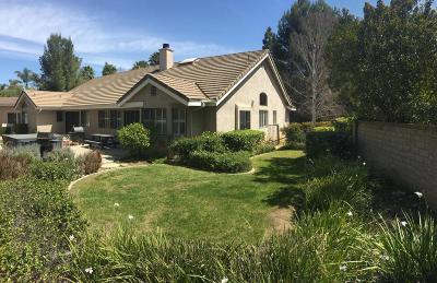Newbury Park Single Family Home For Sale: 665 Silverwheel Place