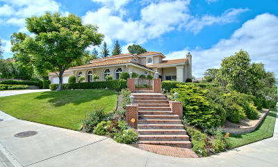 Agoura Hills Single Family Home For Sale: 29305 Laro Drive