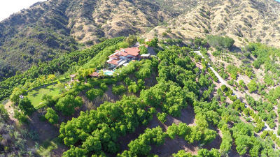 Ojai Single Family Home For Sale: 1605 Daly Road