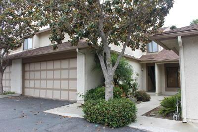 Ventura Single Family Home For Sale: 2414 Chippewa Lane