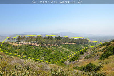 Camarillo Residential Lots & Land For Sale: 7871 Worth Way